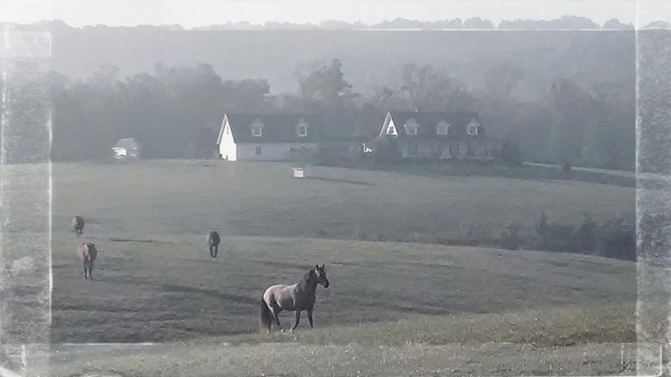 house and pastures in the autumn morning mist