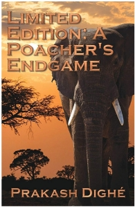 Cover image of the novel. An orange sunset on the Savannah silhouetting an elephant's head.